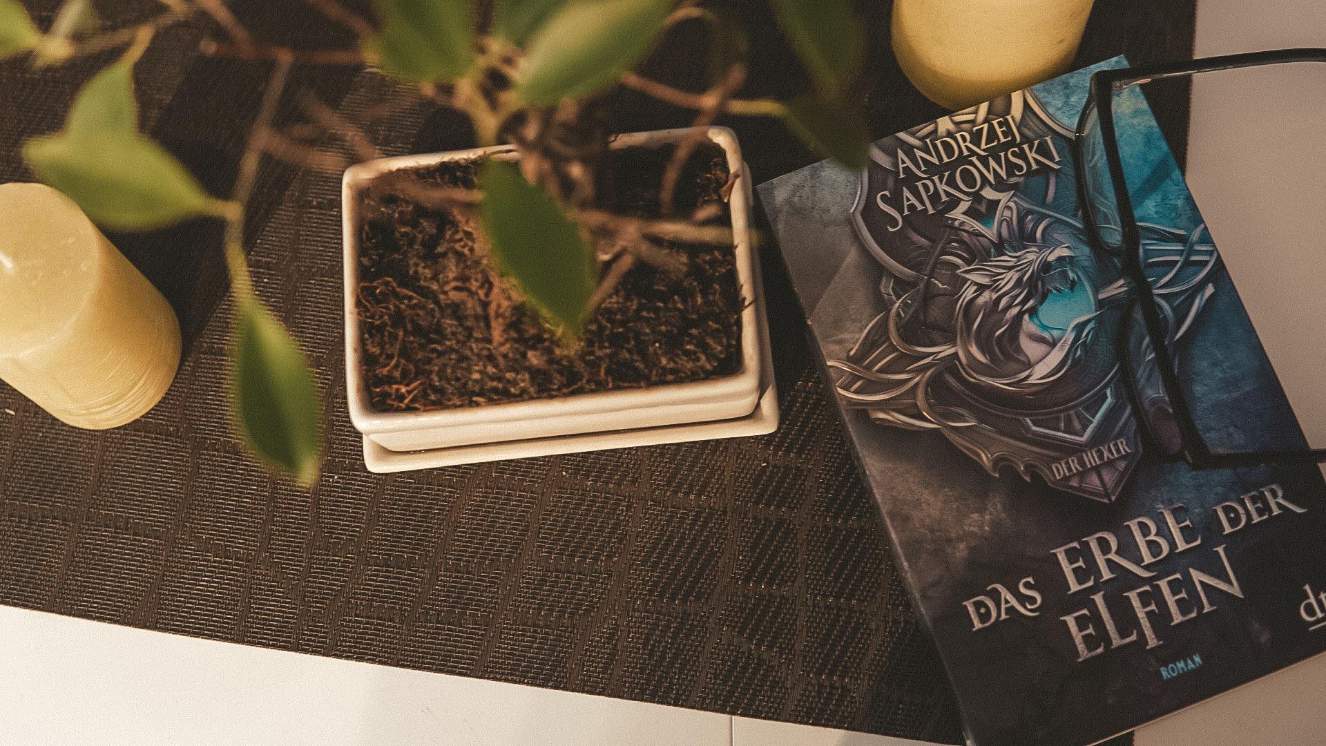 Buch Review: Das Erbe der Elfen - Die Hexer Saga (The Witcher)
